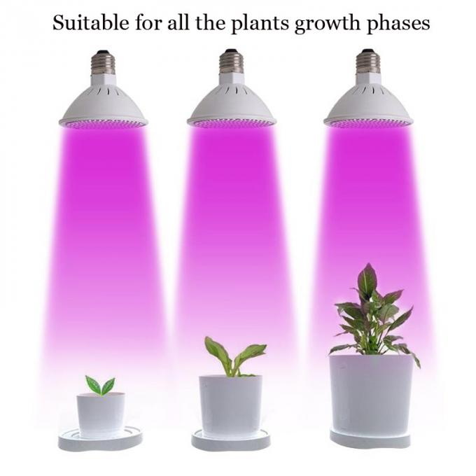 Greenhouse Full Spectrum LED Grow Lights 78 Red 24 Blue For Hydroponics Plant Seeding