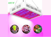 31cm 7200lm Full Spectrum LED Grow Lights 600 Watt Red Blue White UV