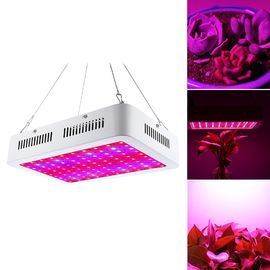 China 80W 5950LM Indoor LED Grow Lamp 100 degree Beam Angle With Hanging Hook Steel String factory